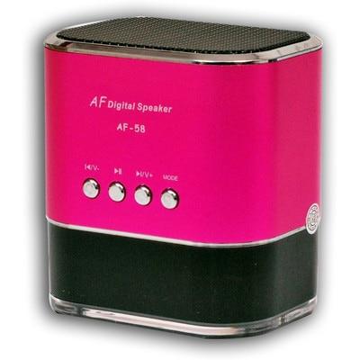 DGB Juke With FM Wireless(Pink)