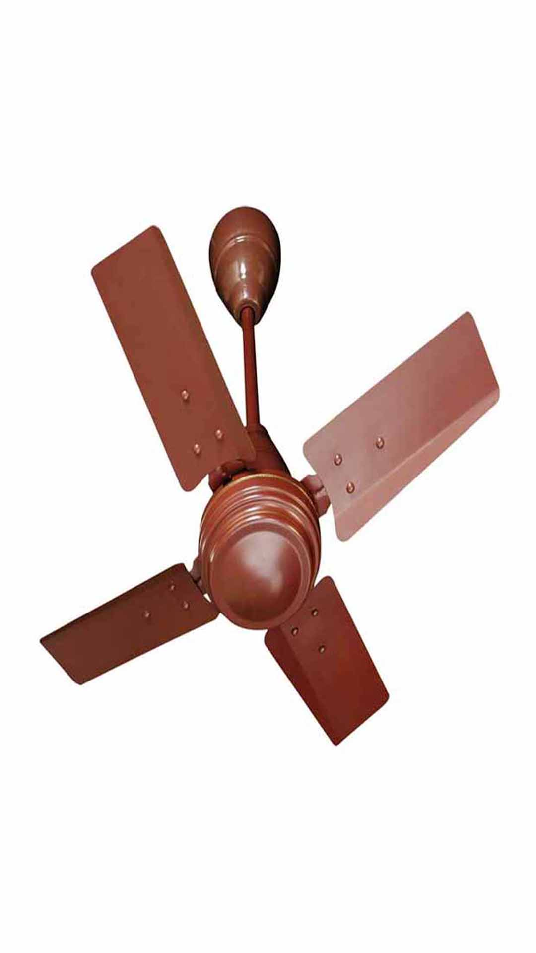 Champion Ccf 24 2072 4 Blade 600 Mm Ceiling Fan Brown