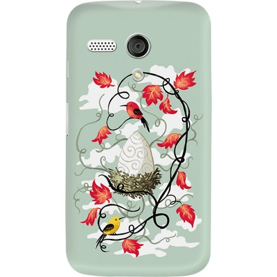 DailyObjects Back Cover For Motorola Moto G (Multi Color) - 7103468