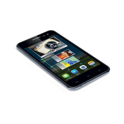 IBall Andi 5m Xotic With Free Cover (Black & Grey)