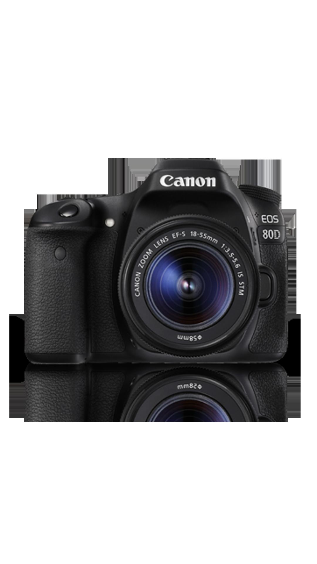 Canon EOS 80D (EF-S18-55 IS STM) 24.2 MP DSLR Camera (Black)
