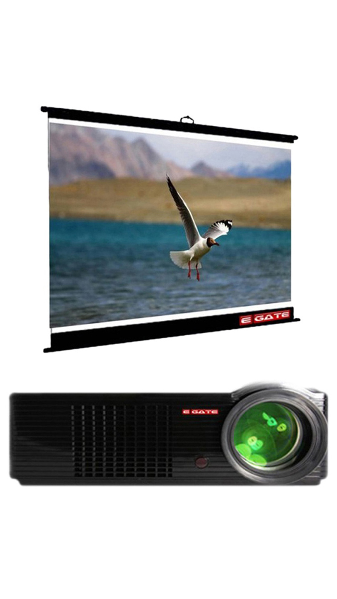 Egate P531 LED Business Android Projector With 6x4 Map Type Projector Screen (Black)