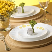 Corelle India Collection Spiral 14 pcs Dinner Set