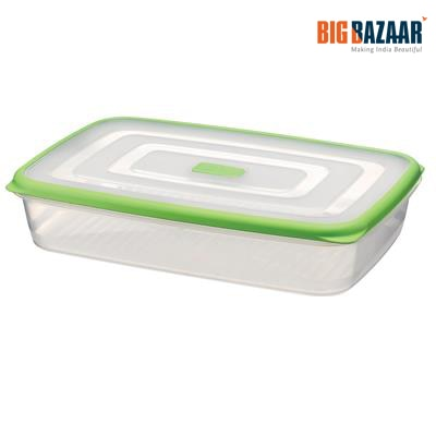 Ecosaver 2 ltr Food Container