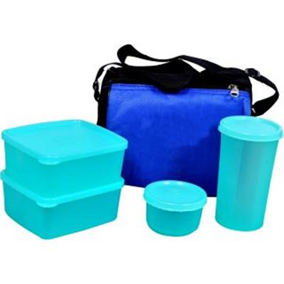 Insulate Lunch Box - Set of 5 (Including Bag)