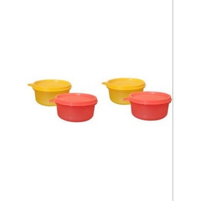 tupperware tropical twin lunch box containers set of 4. Black Bedroom Furniture Sets. Home Design Ideas