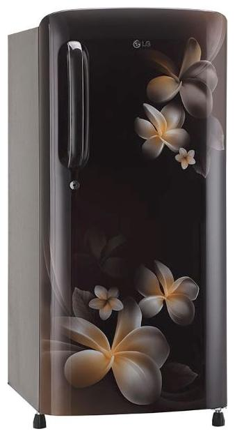 LG Direct Cool 190 Ltrs Single Door Refrigerator (GL-B201AHPX,HAZEL PLUMERIA)